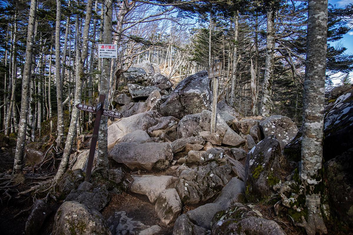 中山峠に到着、左が黒百合ヒュッテで右がみどり池