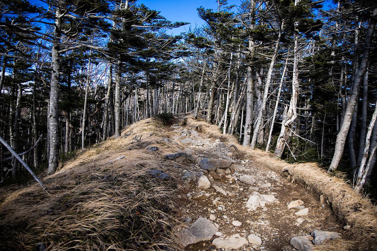 中山峠からまっすぐに進む