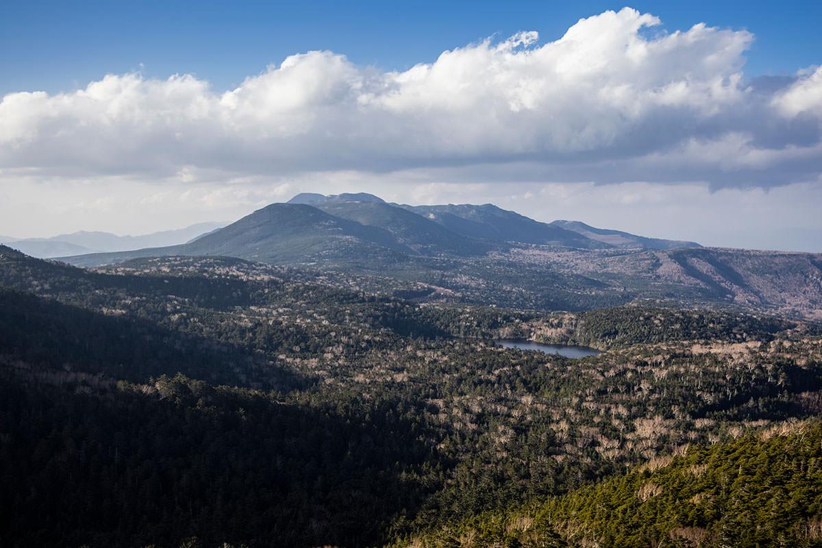 北側は手前に白駒池、縞枯山と北横岳と蓼科山