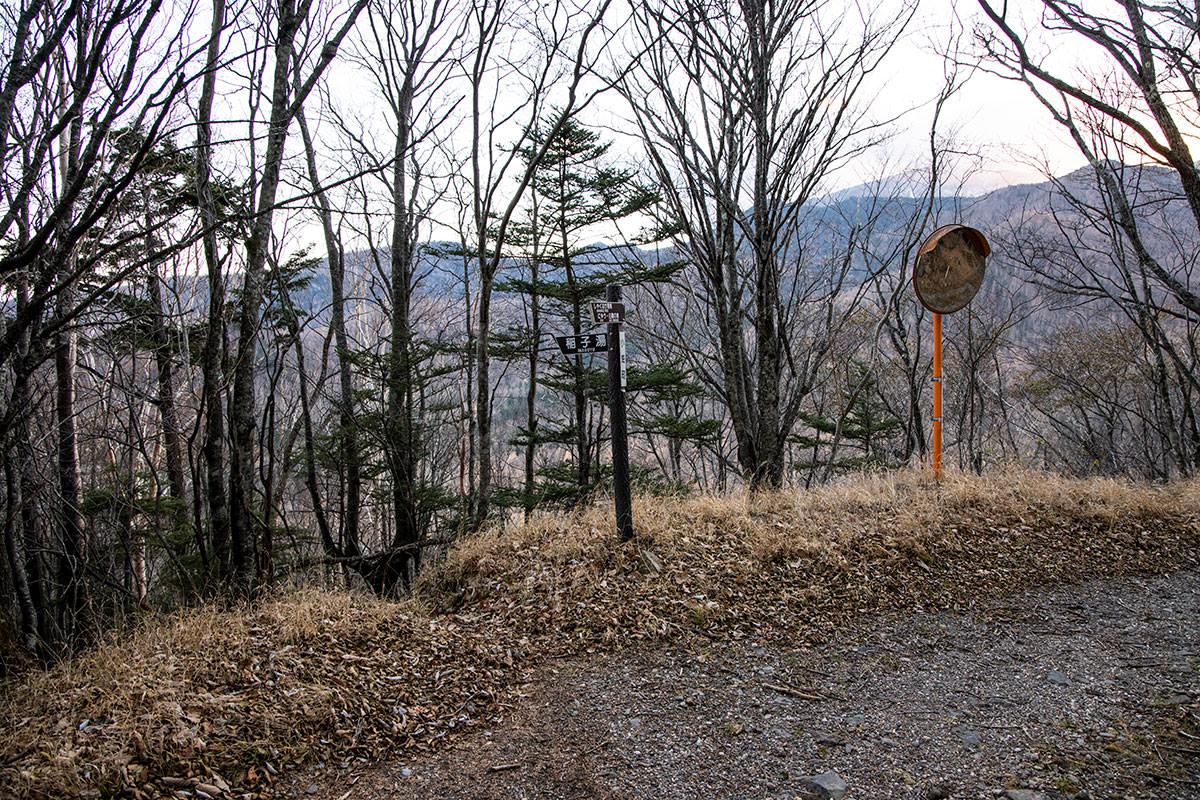 少しだけ林道を歩いたら脇へ下りてショートカット