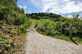 ここから登山道へ