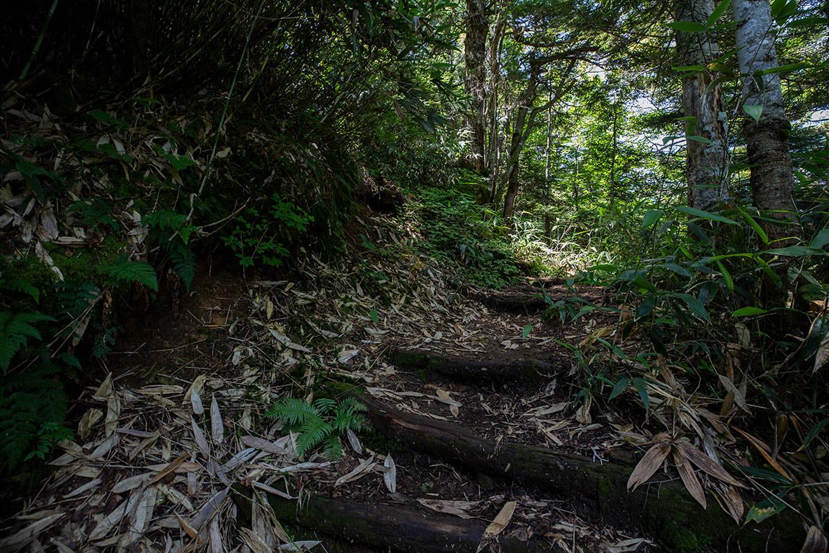 階段の段差がけっこう高い