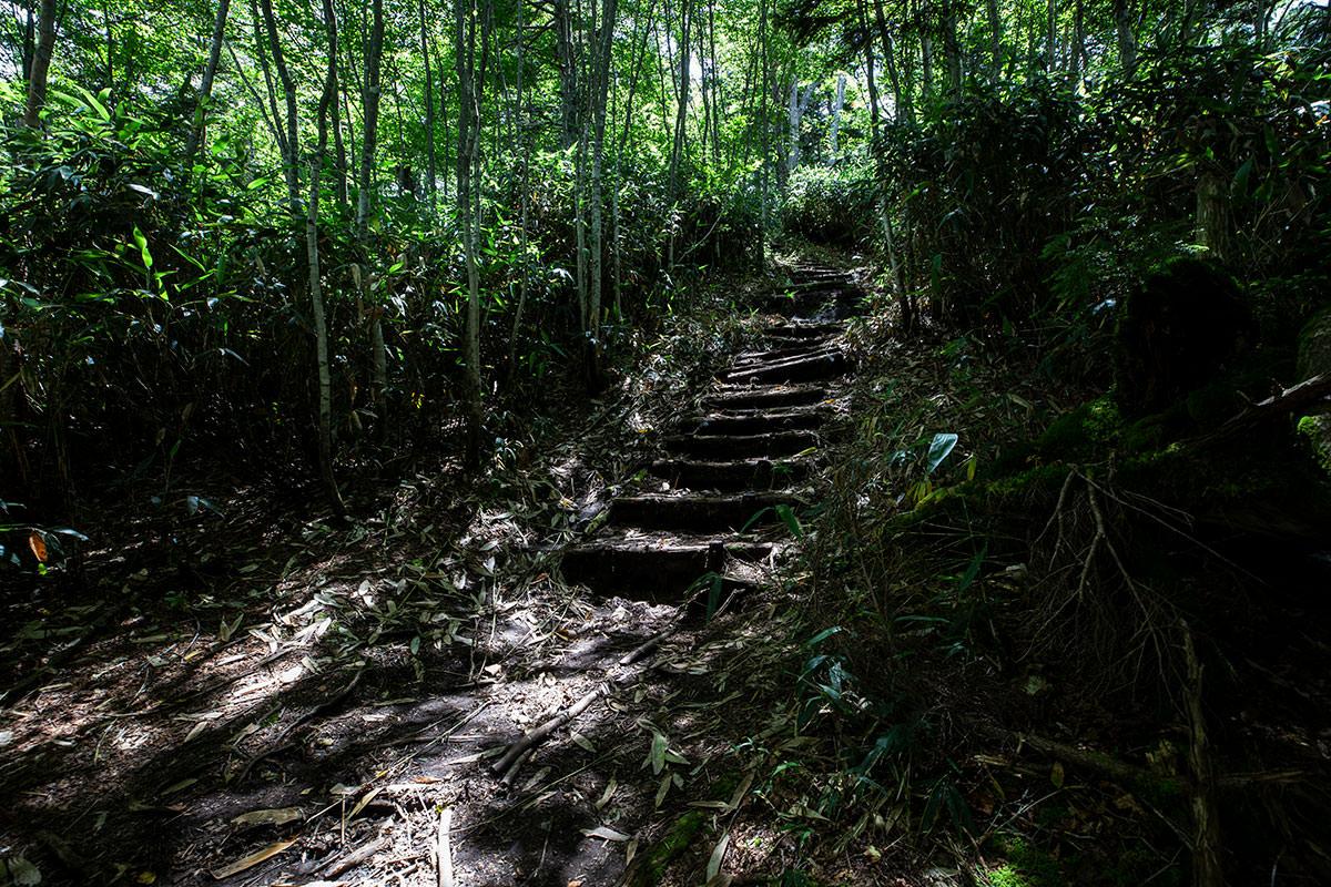 急な階段を登る