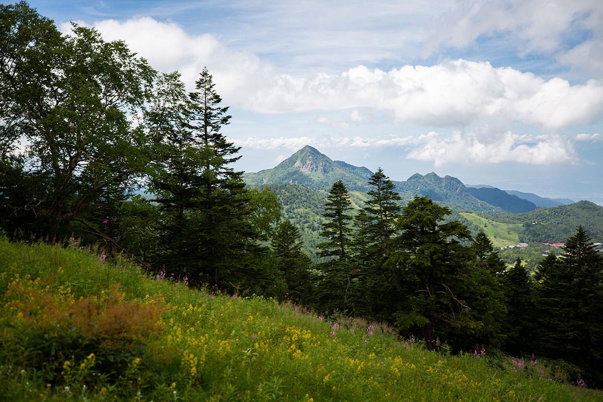 笠ヶ岳が見える