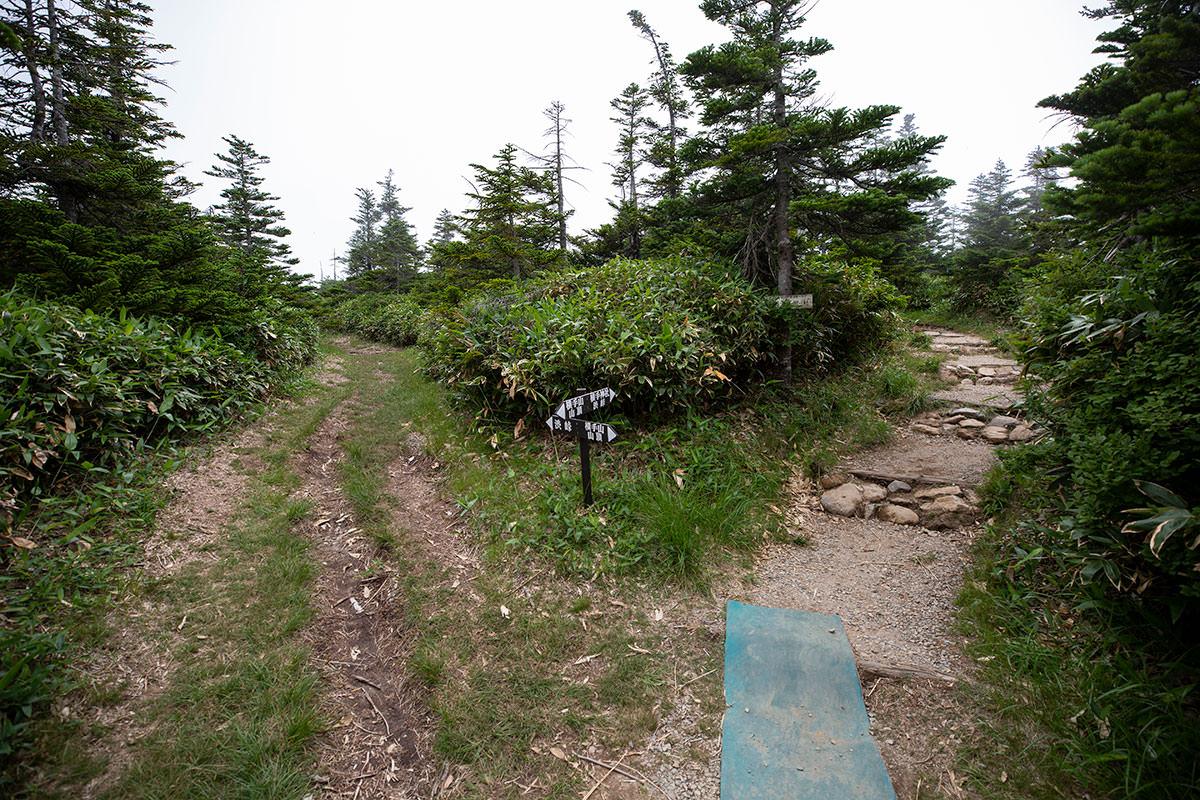この矢印がまた分かりづらくて、山頂って書いてあるからやってきたのに、ここでは反対方向に山頂の矢印が向いている