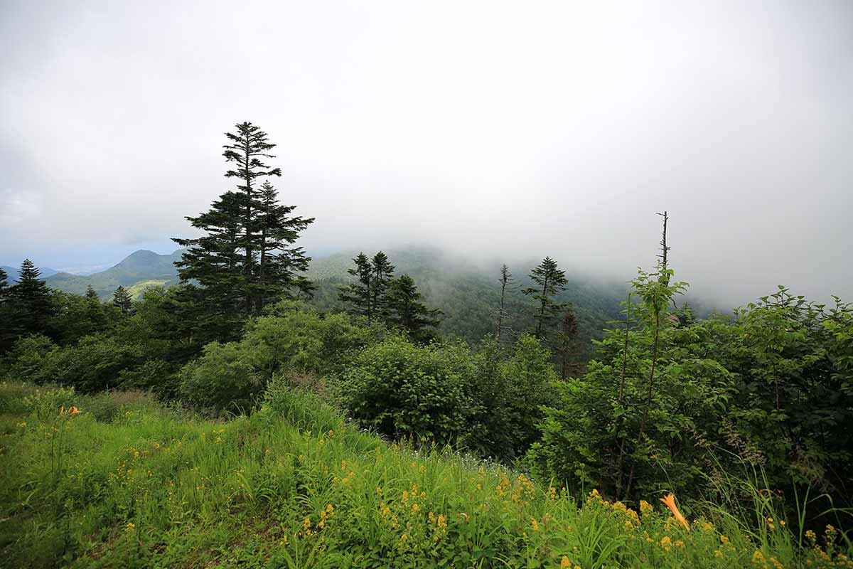 ゲレンデを登っているうちに雲がやってきてる