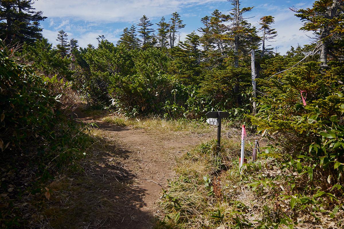 志賀高原横手山-左が山頂、右は展望台