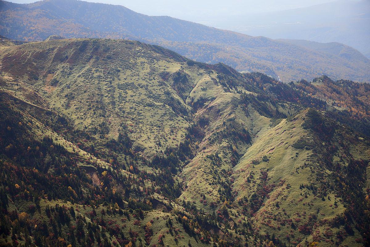 志賀高原横手山-山田峠から笹の山肌を下る道