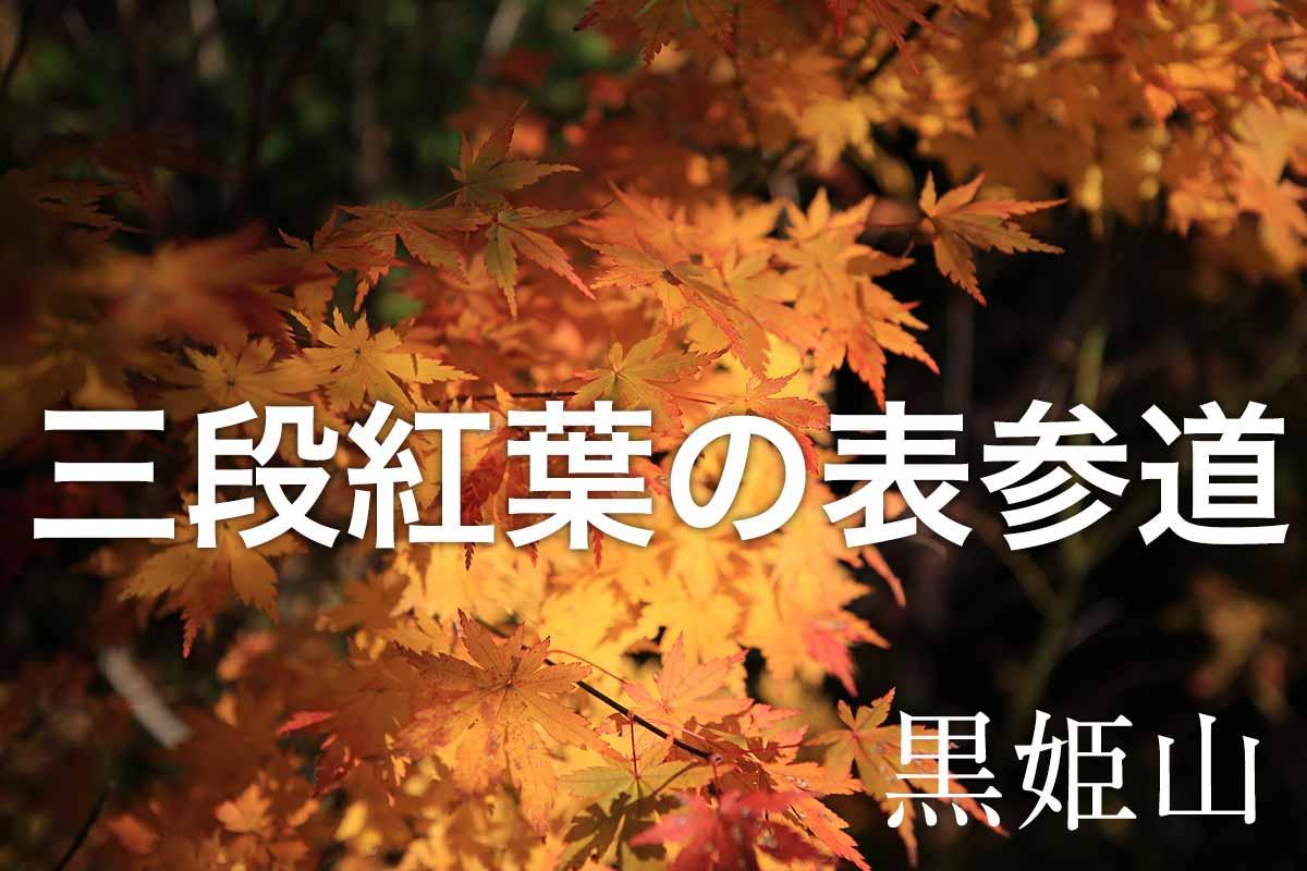 紅葉と雲海の黒姫山