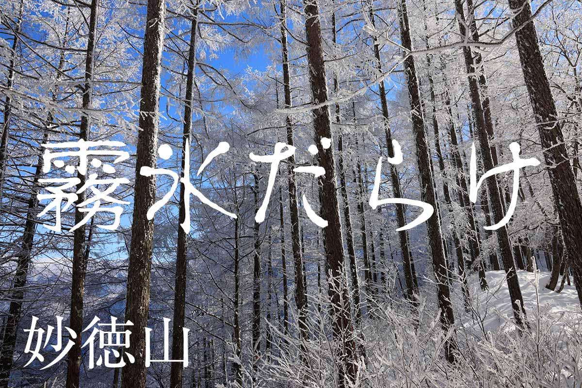 霧氷に覆われる須坂の妙徳山
