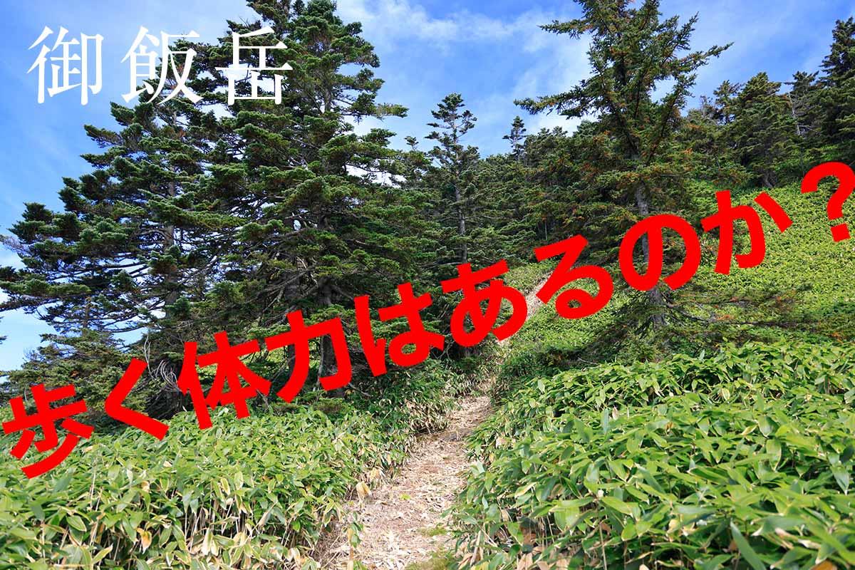がんばって登る毛無峠からの御飯岳
