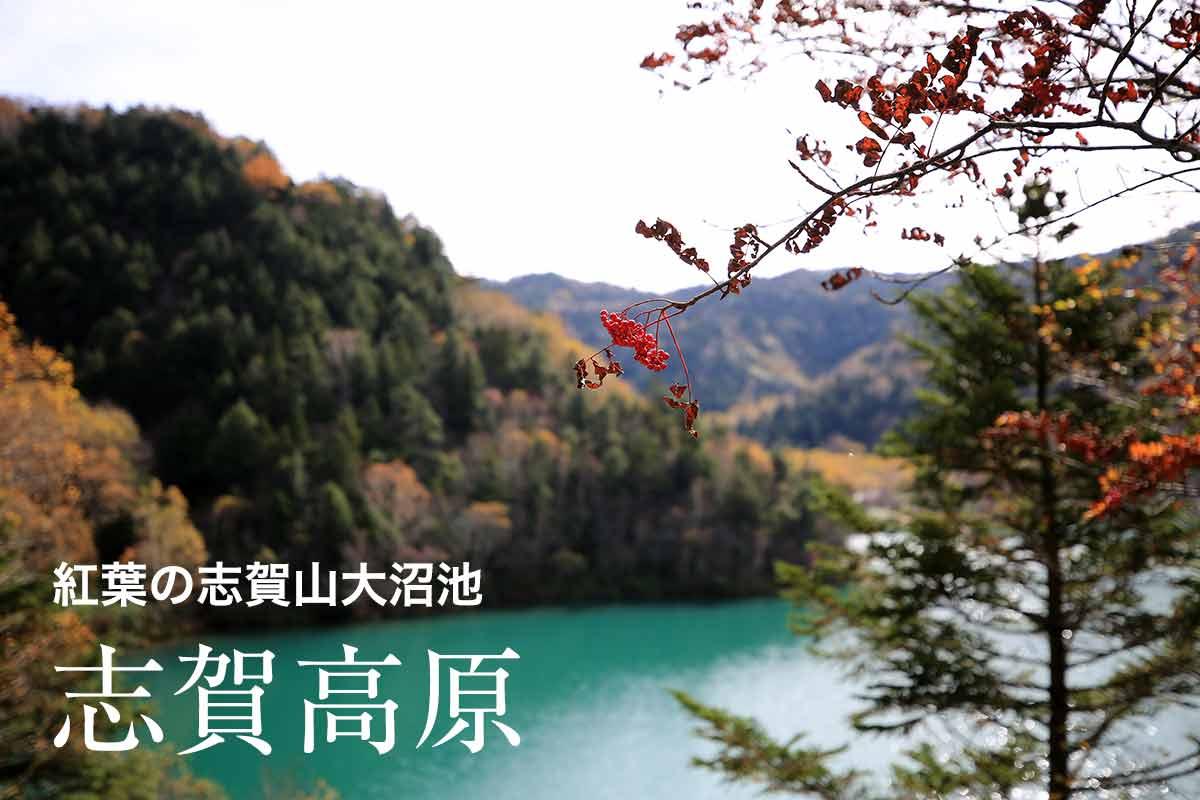 秋の志賀高原 大沼池から志賀山