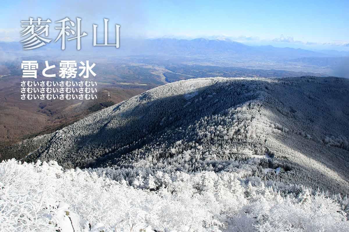 雪と霧氷で寒い寒い蓼科山